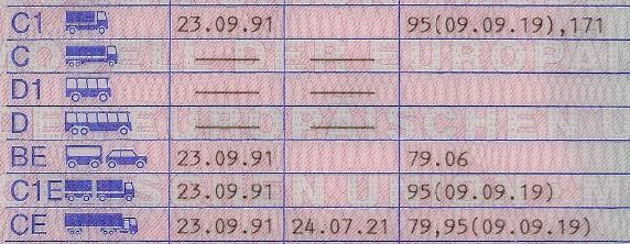FührerscheinSchlüsselzahlSchlüsselzahlenFeld-12BedeutungVerwendungBezeichnungListe-der-Sc.png