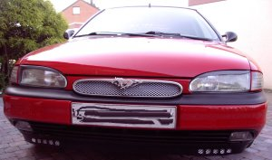 Racing-Gitter in Mondeo-Lippe.jpg